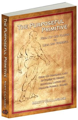 The Purposeful Primitive (Bok)